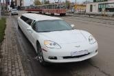 Chevrolet Corvette_1